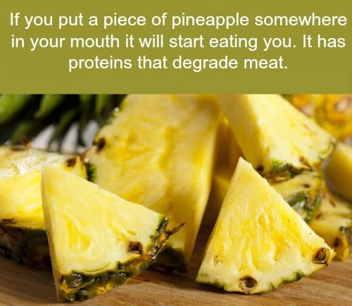 I totally believe this because every time I eat pineapple I get sore spots in my mouth!