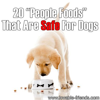 ❤ Not all human foods are safe for dogs!  This is important information that could even save the life of your dog! ❤