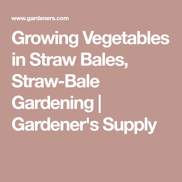Growing Vegetables in Straw Bales, Straw-Bale Gardening | Gardener's Supply