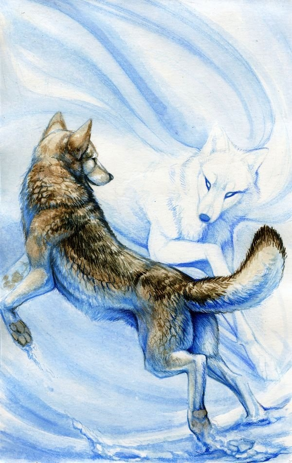 spirits--Eira. I've been thinking about wolves a lot lately in the kingdoms…
