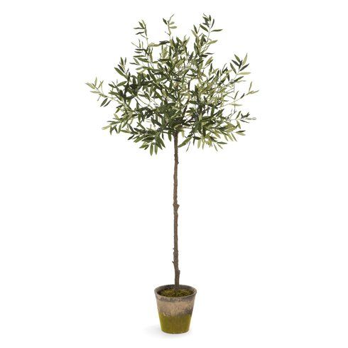 "Olive Tree in Pot Faux 69"" $305"