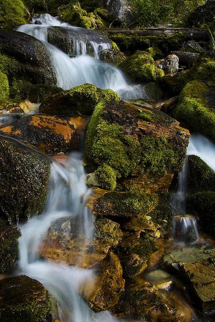 Beautifull busty streams