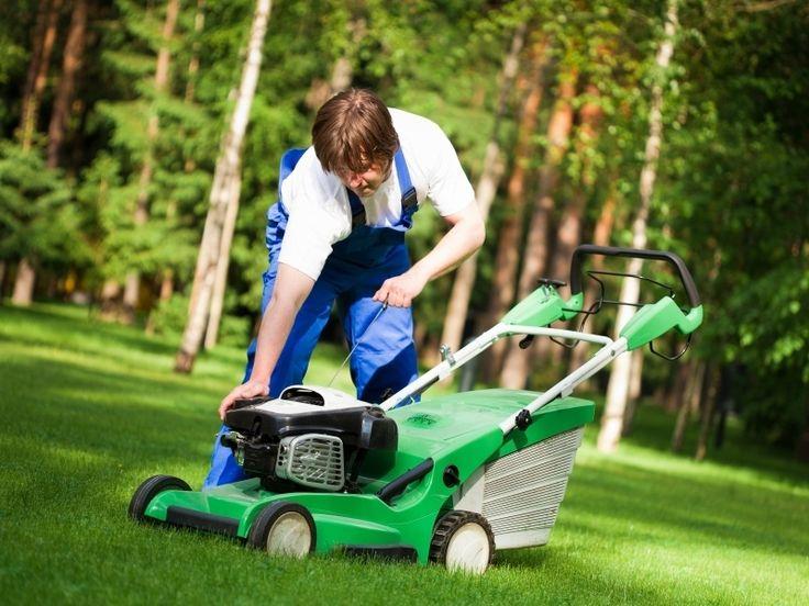 Tuingereedschap is nodig voor het onderhouden van uw tuin. Naast het basisgereedschap waaronder Spade - Drietandkrabber - Schoffel - Hark - Greep - Snoeischaar - Plantschepje - Takkenschaar vallen zijn er ook verschillende elektrische tuingereedschappen die u kunnen helpen om op een snelle en makkelijke manier de tuin te onderhouden. Het juiste gereedschap bespaart u tijd en moeite en kan het w…