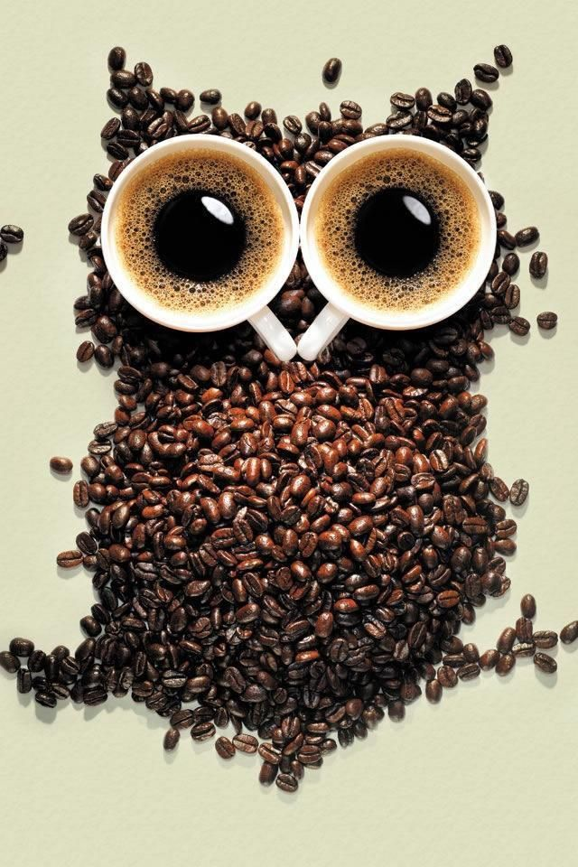 Coffe,,,hahaha, owl