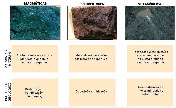O calcário, pode ser um dos melhores campos de procura de fósseis, pois com muita freqüência, originalmente criado a partir de depósitos espessos de carapaças de invertebrados, há muitos milhões de anos. O calcário numulítico (é quando o carbonato possui uma mistura de magnésio e cálcio) provém de antigos depósitos de conchas foraminíferas. Os corais antigos também contribuíram para a formação de muitos calcários no mundo.