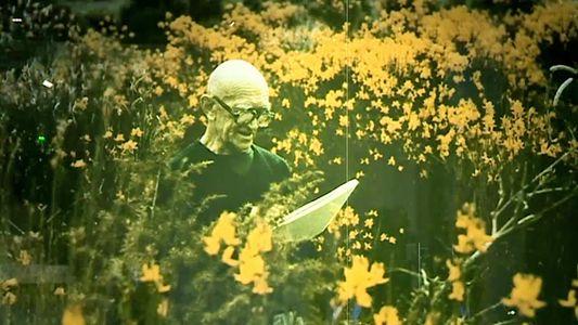 Le moine bénédictin et peintre cartonnier Dom Robert © Culturebox / Capture d'écran