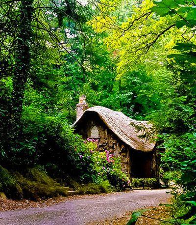 Blaise woods, Bristol, England