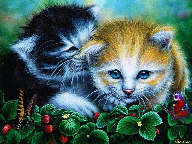 Котята - анимация на телефон №1430826