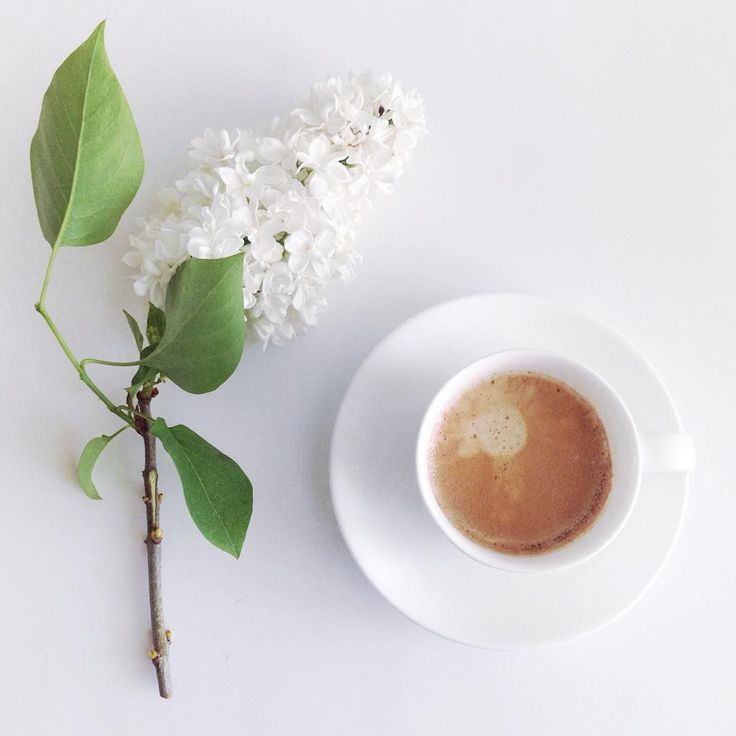 . White Green . . And black coffee ☕️