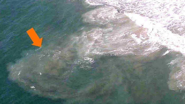 Bukan Karena Angker! Inilah Penyebab Orang Mendadak Tenggelam Saat Berenang di Pantai