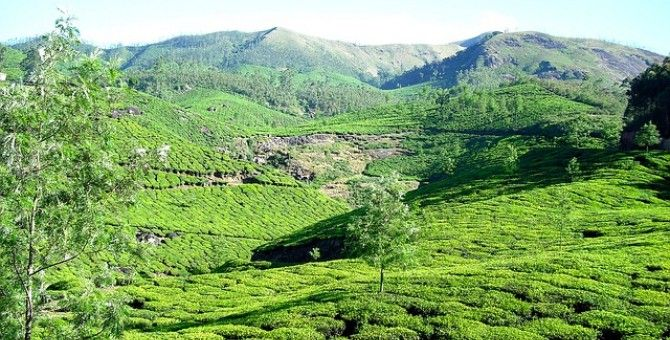 Spend your holidays in Munnar, Kerala