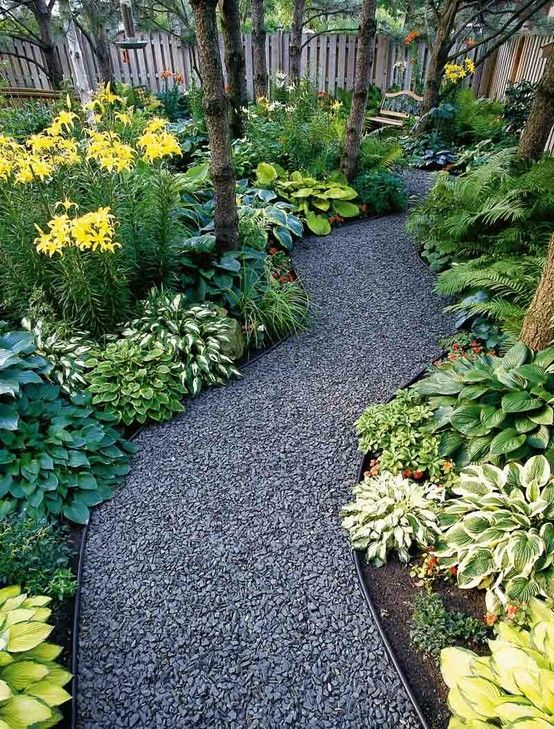 Hosta & fern path - so rich in color & texture!