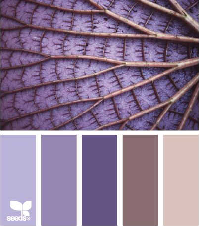 Nature inspired color design wedding inspiration palette in a shades of lavender