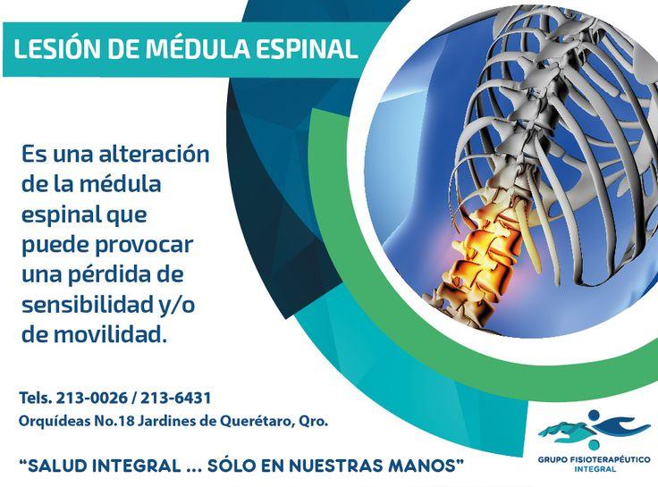 """Una #lesión en la #médula espinal implica daños en los #nervios que pasan a través de las #vértebras. #GrupoFI """"Salud integral sólo en nuestras manos""""."""