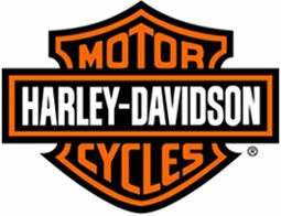 O sucesso da HARLEY-DAVIDSON se deu porque ela é a encarnação sobre rodas. Afinal, representa revolta, liberdade e bandidagem no bom sentido. A esmagadora maioria de seus clientes compra seu produto pelo conceito de rebeldia e liberdade, na forma de uma motocicleta.