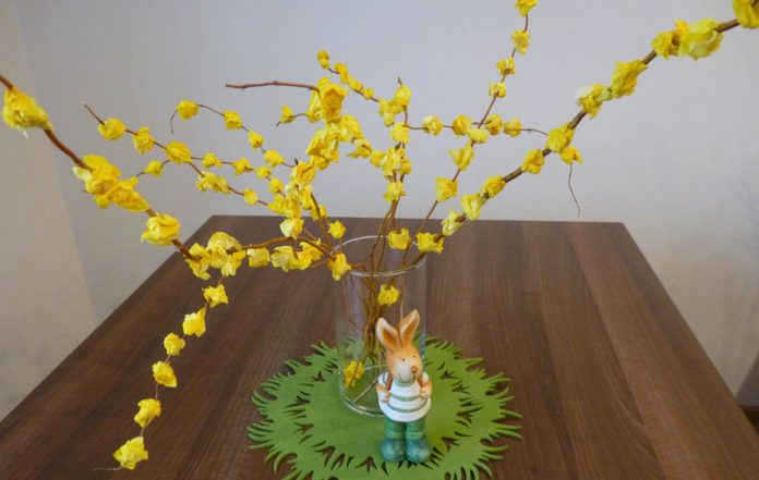 Zlatý dážď - aktivity pre deti