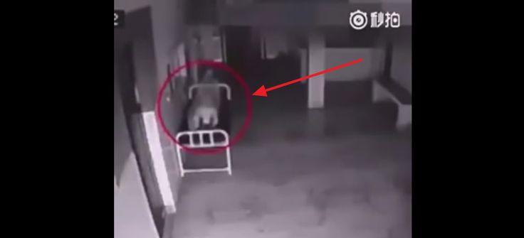Скрытая камера снимает, как душа мертвой женщины покидает тело