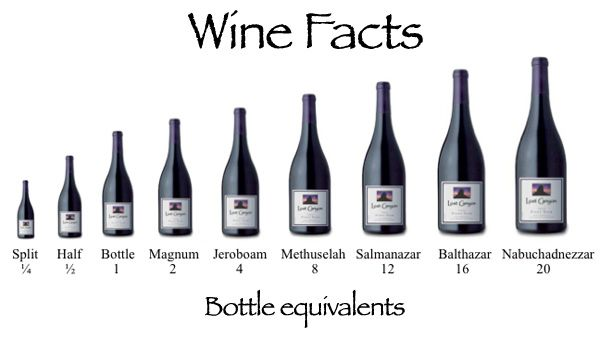 How much can you drink? Check out #wine bottle sizes that hold up to 20 bottles!