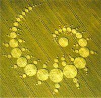 cerchi nel grano spirale