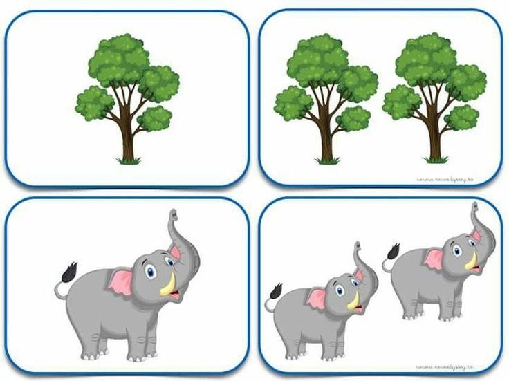 Strom a slon