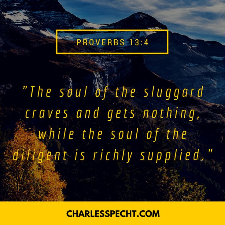 """""""The soul of the sluggard craves and gets nothing, while the soul of the diligent is richly supplied."""" (Proverbs 13:4)"""