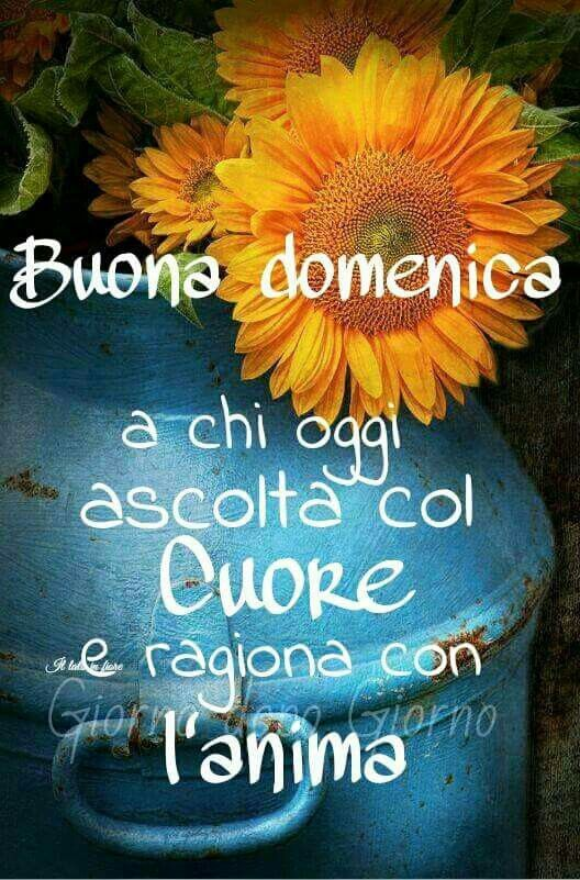 322 best images about Buona domenica su Pinterest ...