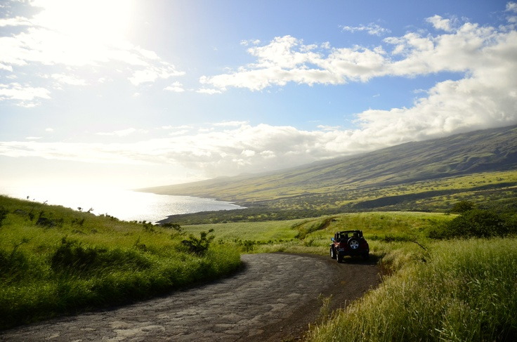 MAJOR TIPS for what to do & see in MAUI- including the best restaurants on the island.  Save for honeymoons & get-aways!