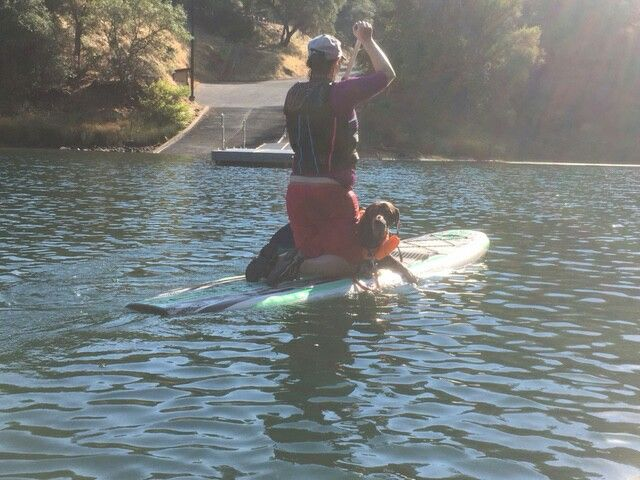 Senior GSP learning to SUP! #GSP #RESCUE