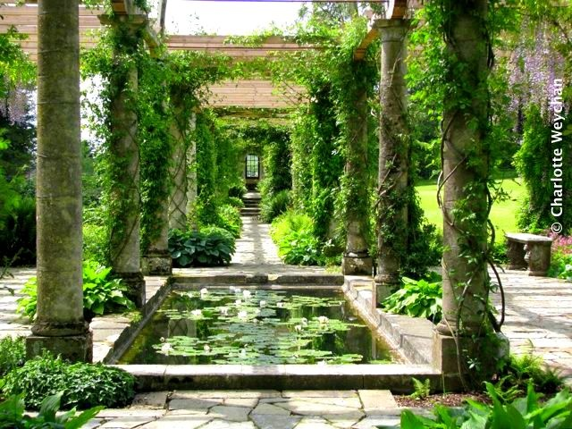 191 best images about edward james on pinterest gardens for Garden pool west allis