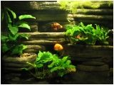 Dramatic AquaScapes - DIY Aquarium Background - Rock Columns