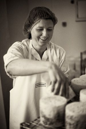 Cheese making at Errington Cheese