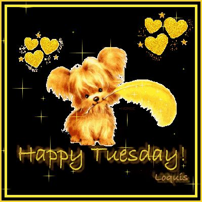 Tuesday | Happy Tuesday Comment Image | MyCommentSpace