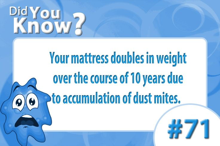 Your Mattress Doubles In Weight Over The Course Of 10 Years Due To Aculation Dust Mites Bacteria Did You Know Pinterest