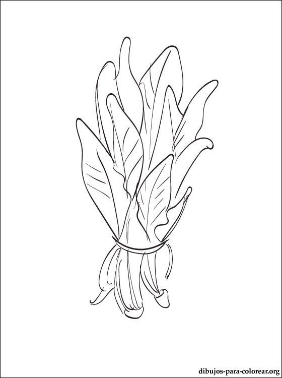frutas coloring pages-#47
