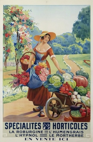 vintage seed packet and flower catalog art