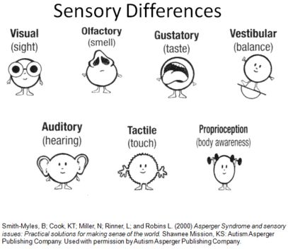 Sensory differences sensory processing disorder spd for Visual motor processing disorder