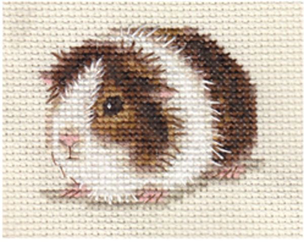 GUINEA PIG, CAVY ~ Full counted cross stitch kit                                                                                                                                                      More