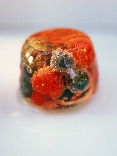 http://www.jamieoliver.com/recipes/fruit-recipes/summer-fruit-elderflower-and-prosecco-jelly/