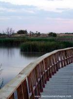 El parque es 1.928 acres y fue declarado parque nacional en 1973. The park is also one of the last ecosystems known as river boards