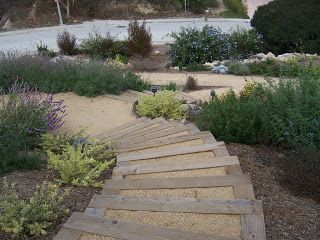 Stairs for a hillside garden using landscape timbers and crushed decomposed granite