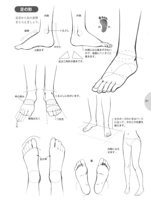 "knickerweasels: "" Drawing Feet and Shoes from 萌えキャラクターの描き方 (How to draw moe characters) """