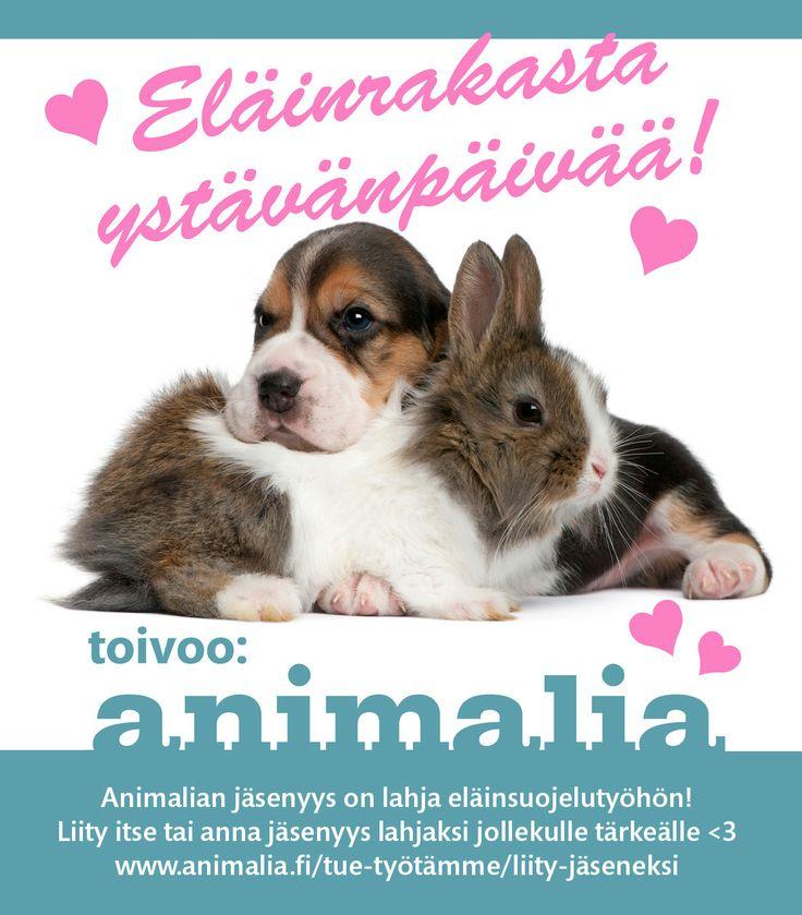 Hyvää ystävänpäivää! Anna ystävälle lahjaksi Animalian jäsenyys, se on lahja myös eläinsuojelutyöhön!