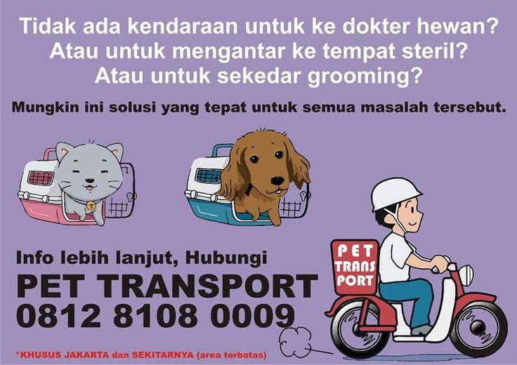 Ojek buat hewan juga ada di Jakarta - SHARE|Petnyaku