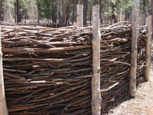 This is our favorite cheap fence! Use cleared limbs from back acre to provide barrier!