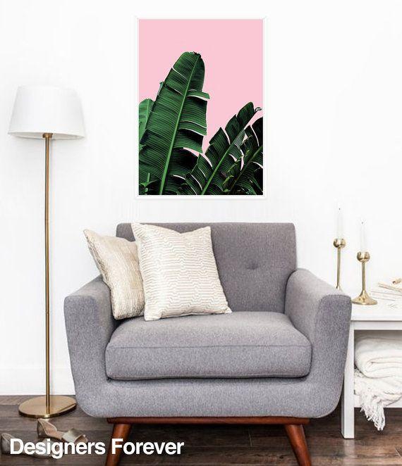 1000 id es sur le th me bananiers sur pinterest plantes for Comment s occuper d un palmier