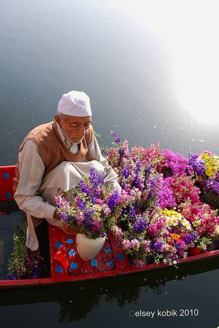 Flower man . Srinagar, Jammu and Kashmir , India