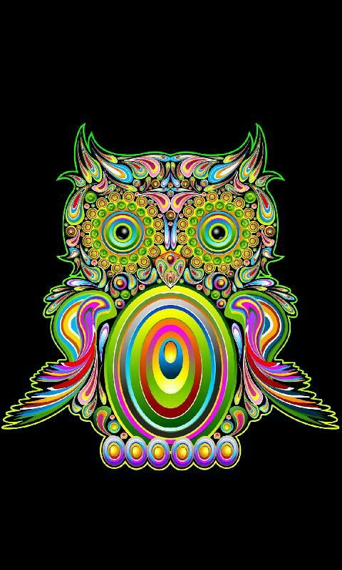 Neon Colored Owl Owl Wallpaper Download Wallpaper Hd Ios