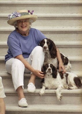 English Springers Millie and Ranger with Mrs. Bush