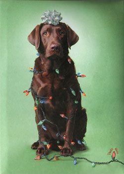 Light-Up Chocolate Lab Christmas Card $8.95