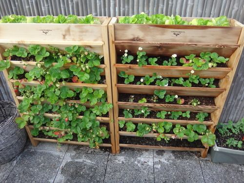 Cedar strawberry planter plans woodworking projects plans for Garden planter plans